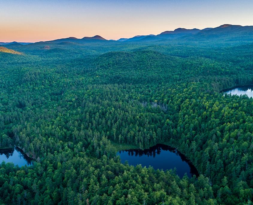Wildlands Partnership Launches
