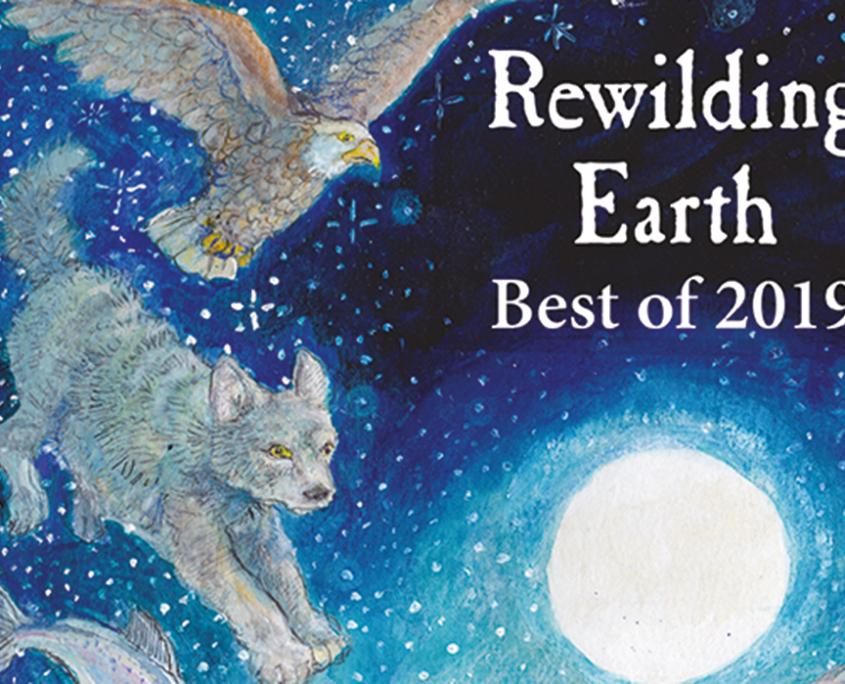 Best of Rewilding Earth 2019