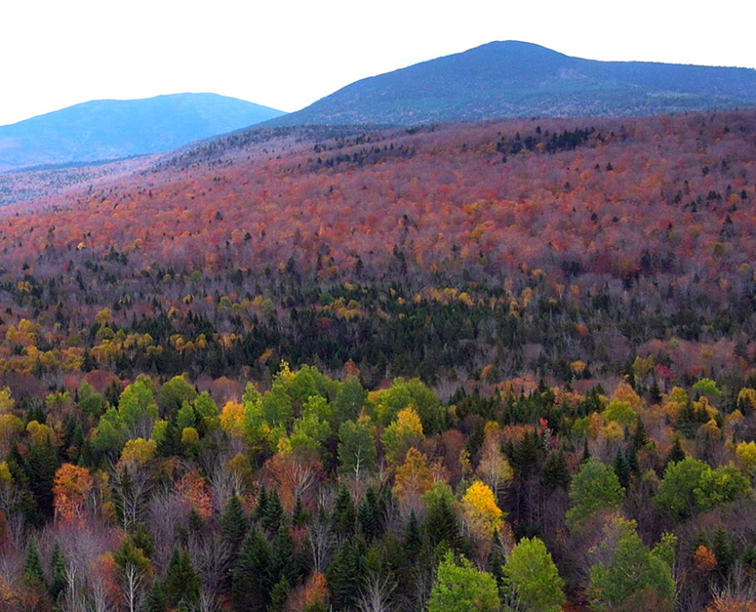 Thank You, Appalachian Trail Conservancy!