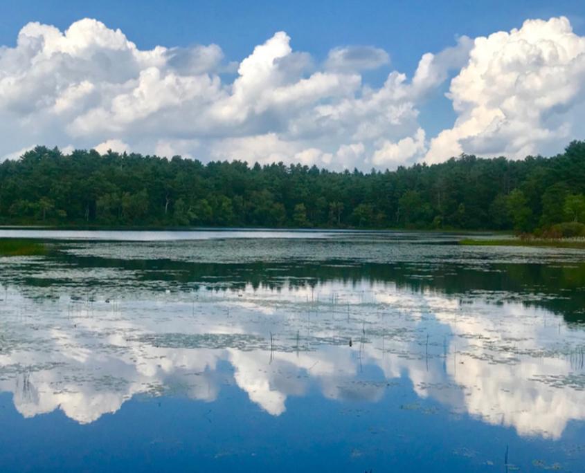 Partnership with Native Land Conservancy Unfolds
